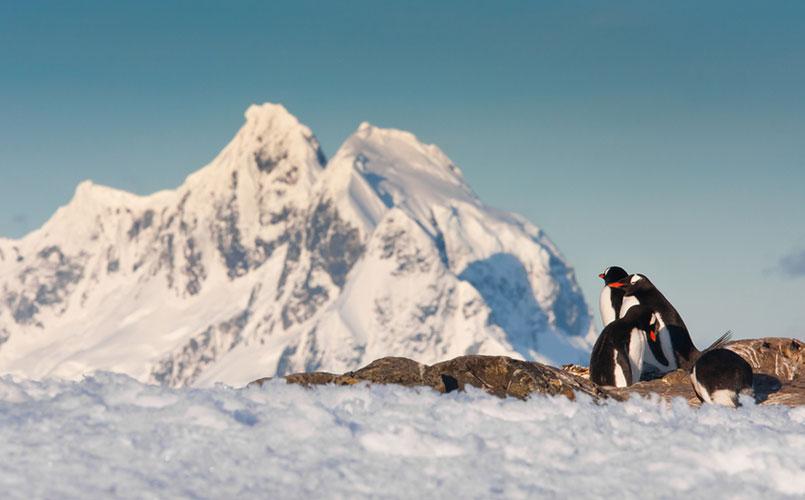 Legendarische reis naar Antartica