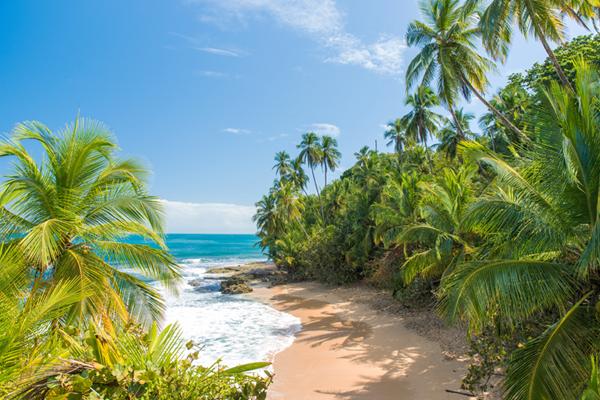 Manzanillo beach, Costa Rica. Midden-Amerika